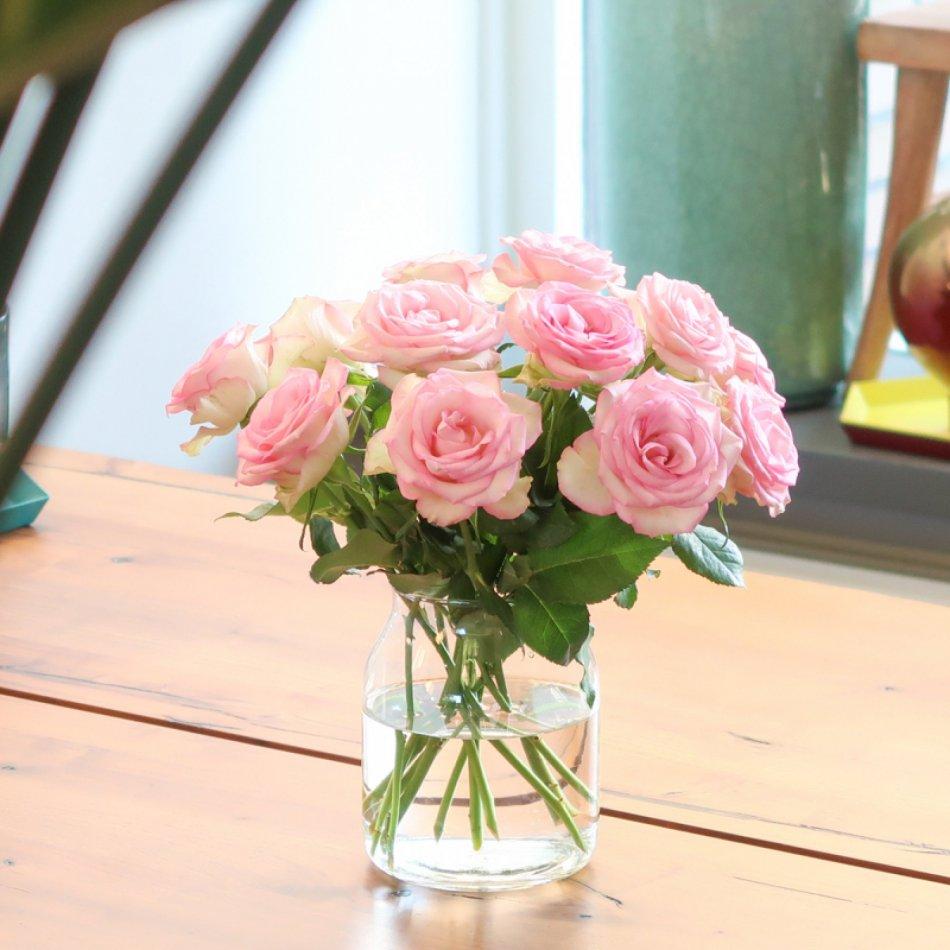 Roze Brievenbusrozen
